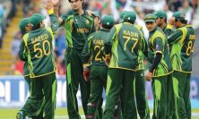 tallest cricketers cover
