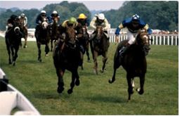 THE MOST MEMORABLE HORSE RACES OF ALL TIME