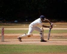 cricket-166906_1280